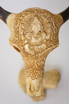 Hand carved bone, buffalo skull design