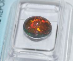 Black Opal - 1.80ct - No reserve Price