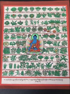 Thangka Medicine Buddha - Tibet - late 20th century