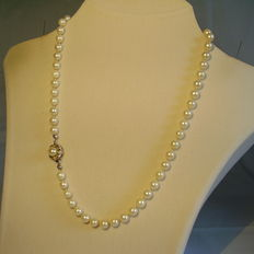 Authentic white Akoya pearl necklace with gold clasp and diamonds 0.24 ct