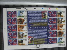 Belgium 2002/2004 - OBP 3050 to 3347 with various BL between 94 and 117, booklets and foreign stamps collected.