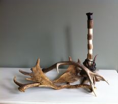 Antler lamp and lot of three antler rods - USA - 40/50s
