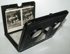 Vintage camcorder to view relief photos