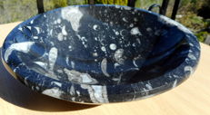Beautiful bowl of fossil marble with Orthoceras fossils