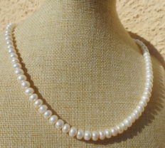 Necklace made of freshwater pearls