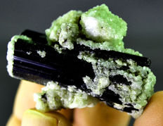 Rare Green Color Hederite crystals On Tourmaline -  41 x 30 x 21 mm - 27gm