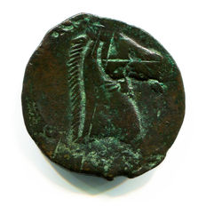 Greek Antiquity - Carthage - Sicily and Sardinia Mint 264-241 BC – Punic Great Bronze/dishekel, Tanit Horse (13,66 gr., 28 mm.)
