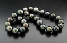 Impressive large Tahitian pearl necklace of 15-16mm anthracite grey diamond clasp in 750 white gold