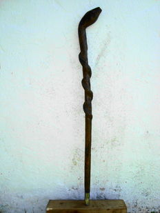 Wooden Walking stick in the shape of a snake - Alpine - Tyrol - 19th century