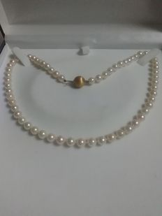 Akoya pearl necklace with 18 kt gold ball clasp
