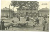 Bekijk onze Live in France around 1910. Very nice lot of 140 postcards including very good animations (1900-1920)