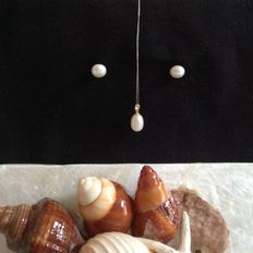 Freshwater pearl pendant, 11 mm with 18 kt bail, one pair of 10 mm freshwater pearl ear studs, with 14 kt gold studs.