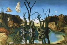 Salvador Dalí (after) -  Swans reflecting elephants again