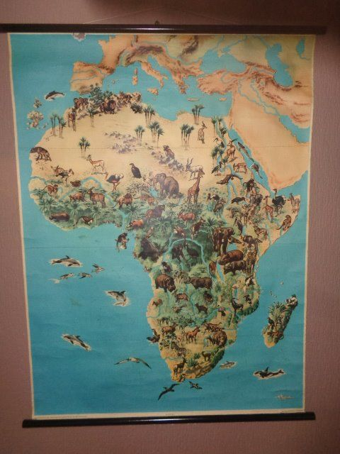 Old school poster /school map of Africa with its wild animals and plants. -  Catawiki