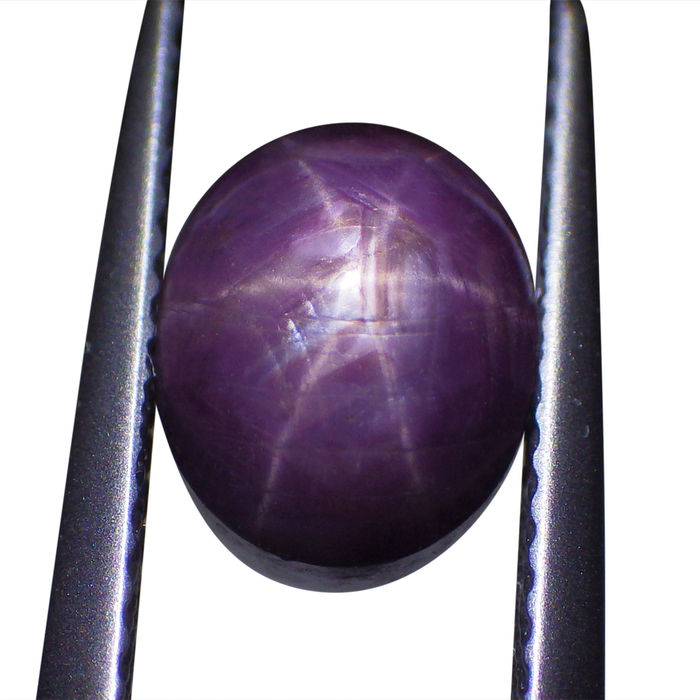 Star Sapphire - 4.53 ct - No Reserve Price