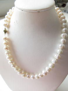 14 kt gold – necklace with hand-knotted, cultured freshwater pearls – spherical clasp – length 44 cm