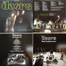 The Doors Lot Of Two ( 2 ) LP's With Lots Of Rarities (Live / Alternate / Rehearsal / Unreleased / Demo)