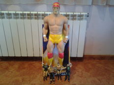 Lot of figures of World Wrestling Entertainment (WWE)