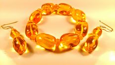 Genuine Baltic Amber bracelet and earrings, olive shape,  honey color, No reserve, 42 grams
