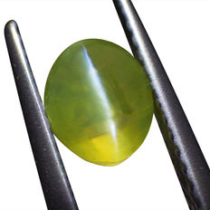 Cat's Eye Chrysoberyl - 1.47ct