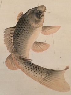 'Carp in waterfall' - Beautiful detailed handpainted scroll painting, signed and stamped - Japan - ca. 1860