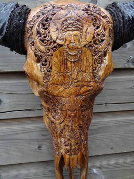 Hand-carved and patinated Asian Cow skull, with Buddha motif - Bos