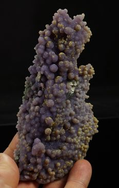 Bi-color Grape chalcedony premium quality unusual form - 13,0 x 6,3 x 4,3 cm - 174gm