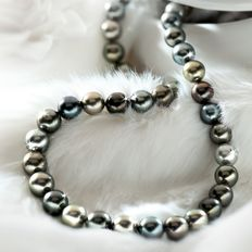 Necklace of multicoloured Tahitian pearls from 10 to 11.0 mm in diameter