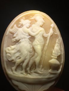 Cameo on shell - Weight: 4.9 g - Measurements: 40 x 30 mm