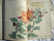 Lot with 4 complete authentic albums (160 prints) of Imao keinen (1845-1924) - Keinen Kacho Gafu (Album of Bird and Flower Pictures by Keinen) - Japan - 1891