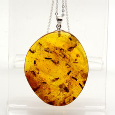 Pendant with a 025 silver chain and amber with beetles, flies and other insects. Weight: 9 g.