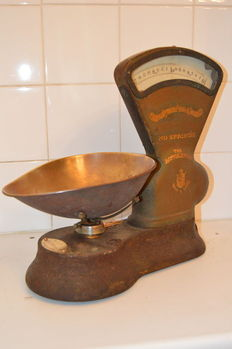 Rare old scale, Avery Toledo,