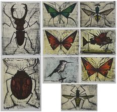 Bernard Buffet (after) - Les Insectes (10 works)