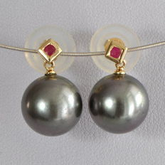 Earrings with silver-grey Tahiti pearls and rubies, Ø 11.6 mm