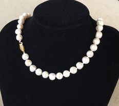 14 kt pearl necklace with very large, white, Japanese Akoya pearls, with a gold clasp.