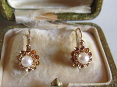 Large antique 'sleeper' earrings in gold with prong-set Akoya cultivated pearl.