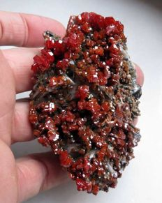 Magnificent vanadinite on baryte - 8.5 x 6 x 2.5cm