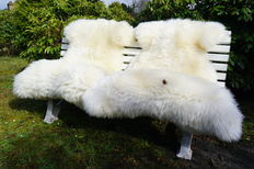 Pair of very large, natural white Sheep skins - Ovidae sp. - 134 and 140cm  (2)