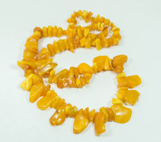 Antique Baltic Amber necklace, old honey butterscotch egg yolk colour, 62 gram