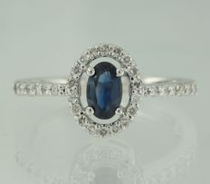 14 kt white gold ring set with sapphire and 30 brilliant cut diamonds of approx. 0.30 ct in total, ring size 17.5 (55)