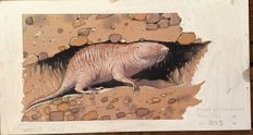 "Neave Parker (1910-1961) - Original illustration ""Naked sand rat"" - early 1950s"