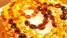 Genuine Baltic amber multi colour necklace, 91 gram