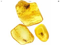 3 Baltic Amber stones with inclusion