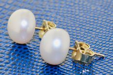 Gold earrings 14 kt with pearl - length: 0.8 x 0.8 cm.