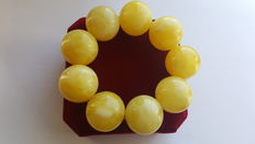 White butter colour Baltic amber bracelet with large beads, weight: 77 grams