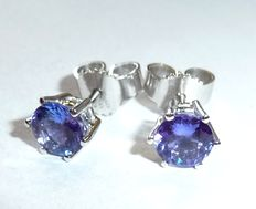 White gold earrings 14 kt / 585, stud earrings with 2 tanzanites totalling 1 ct, intense colour, diameter with  claw 6.3 mm