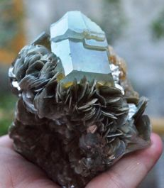 Large Terminated Aquamarine Crystal with Muscovite - 70 x 79 x 74mm - 386gm