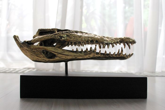Fine bronze replica Crocodile skull, with stand - 37 x 17cm