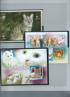 Cats - Topical collection on stock cards