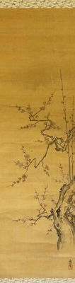 Beautiful old scroll painting of a plum flower branch signed with 甫 信 (Yoshinobu, 1692-1745) - Japan - first half 18th century